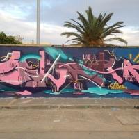 Seleka_HMNI_Graffiti_Spraydaily_13