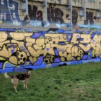 Sobekcis_HMNI_Spraydaily_Graffiti_02