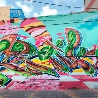 Zurik_HMNI_Graffiti_Girl_Bogota_Colombia_05