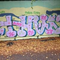 Wednesday Graffiti Walls Spraydaily 002_THAI Photo @astrocapcph