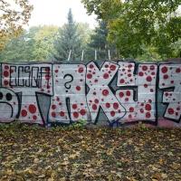 Wednesday Graffiti Walls Spraydaily 002_Taxy7